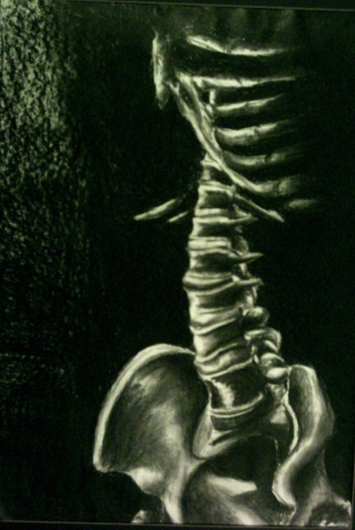 Spine, charcoal, 2004